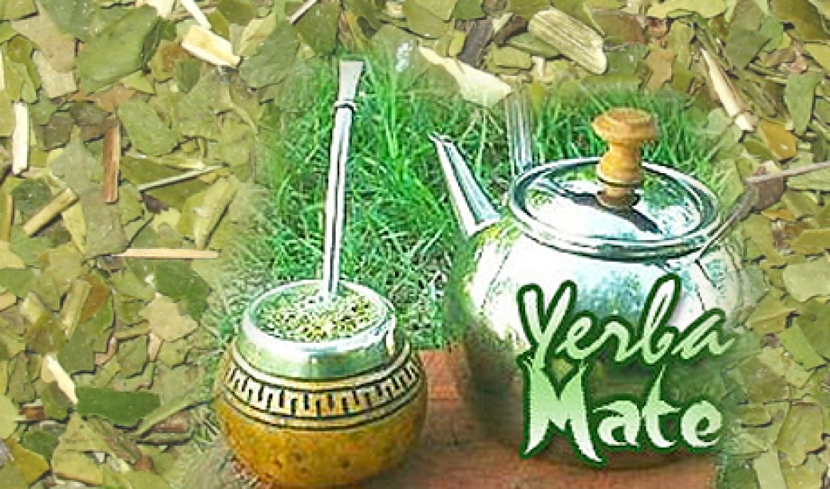 Yerba Mate – The miracle tonic beverage